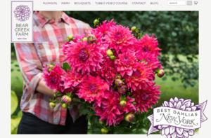 screeenshot of Bear Creek Farm website