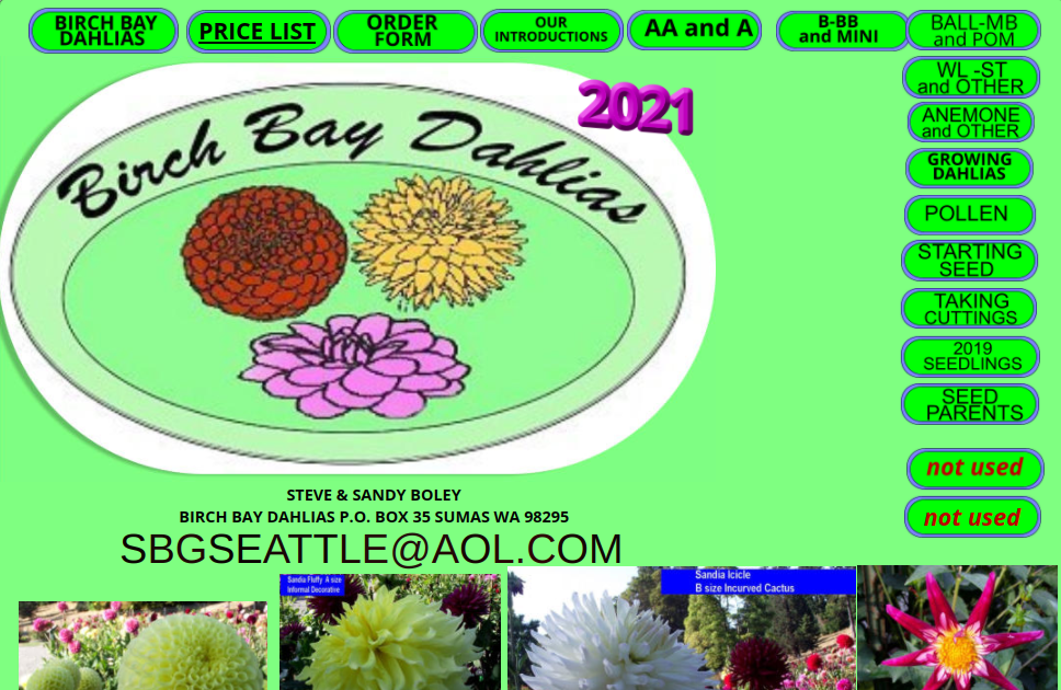 screenshot of Birch Bay Dahlias website