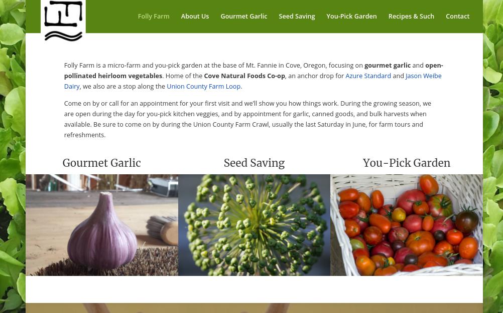 screenshot of Folly Farm website