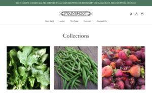 screenshot of Foundroot website
