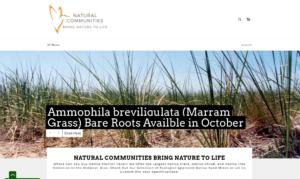 screenshot of Natural Communities Native Plants website