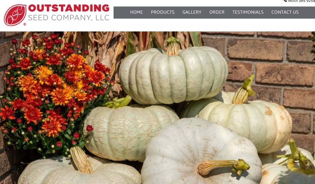 screenshot of Outstanding Seed Company website