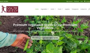 screenshot of Snow Seed website