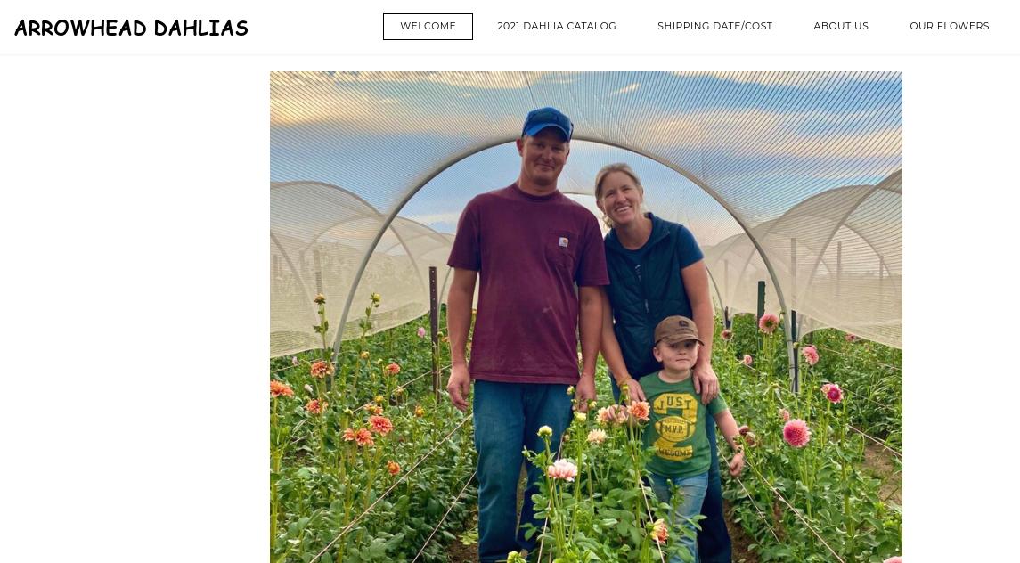 screenshot of Arrowhead Dahlias website