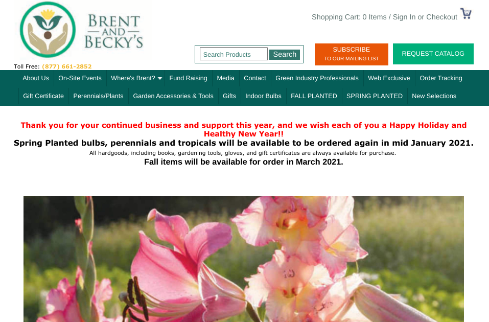 screenshot for Brent and Becky's website