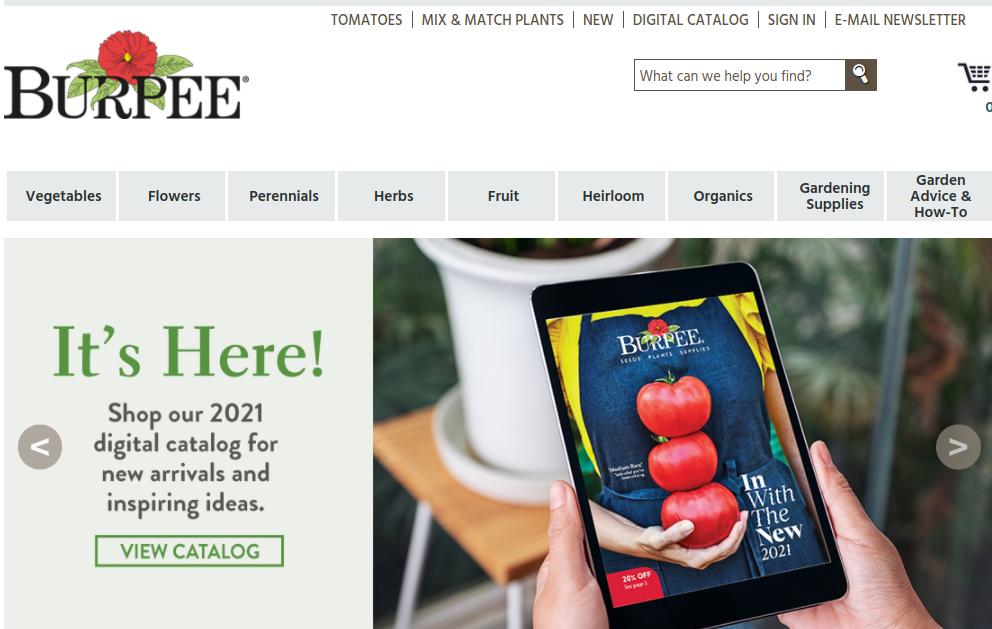 screenshot for Burpee website