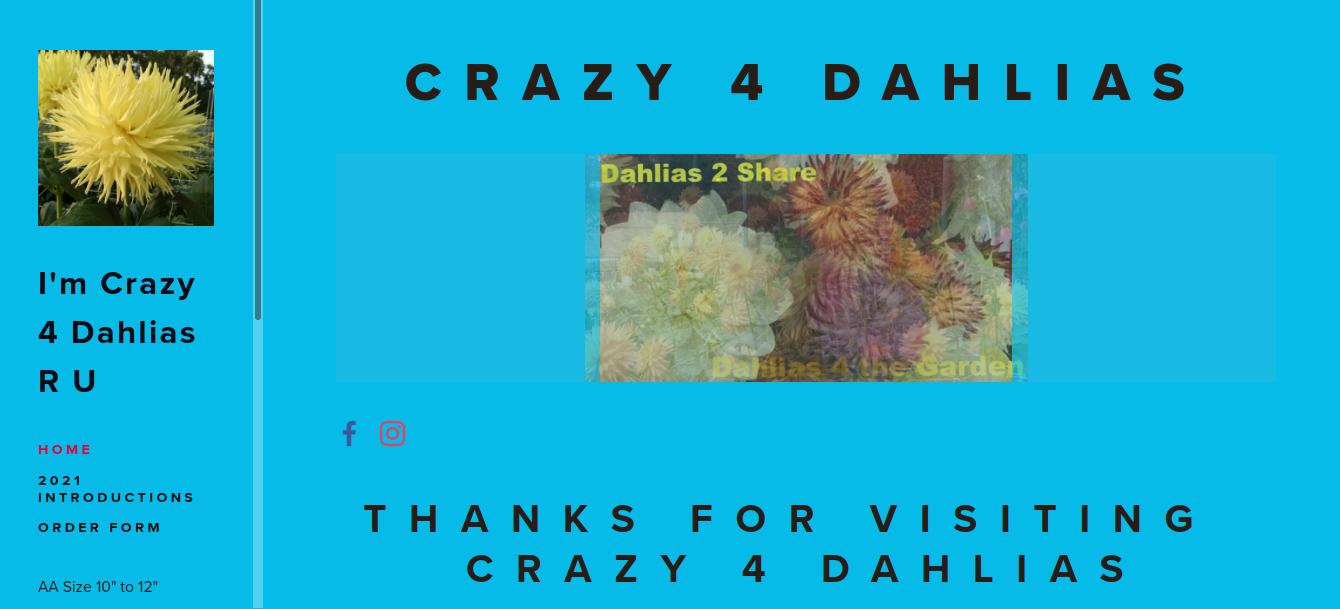 screenshot of Crazy 4 Dahlias website