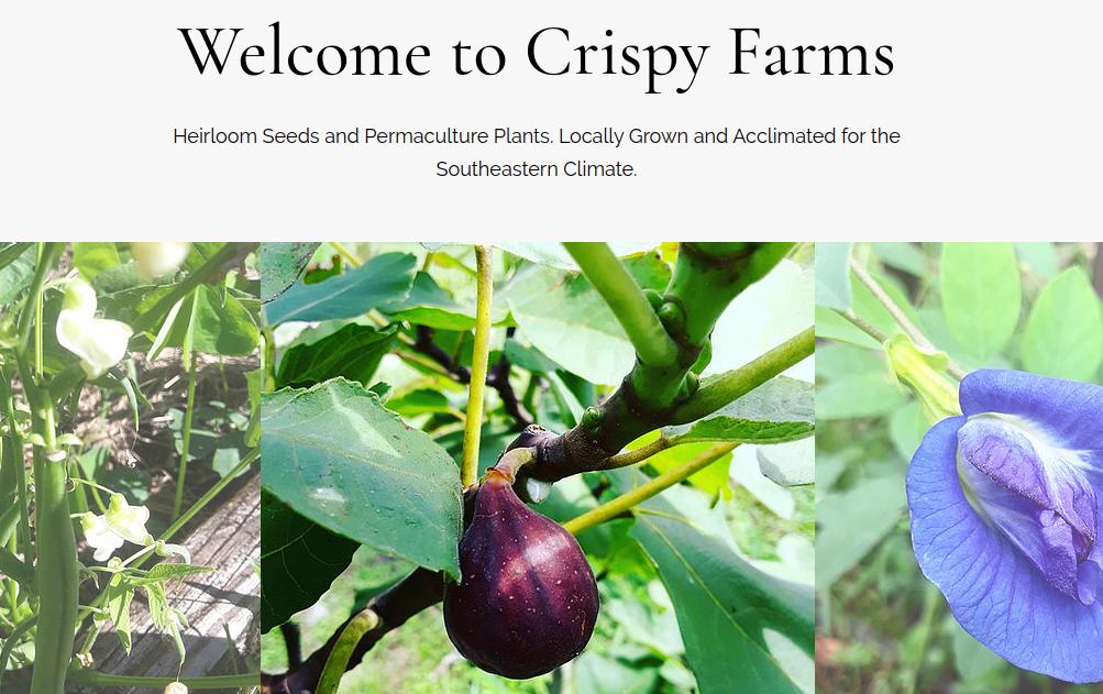 screenshot of Crispy Farms website