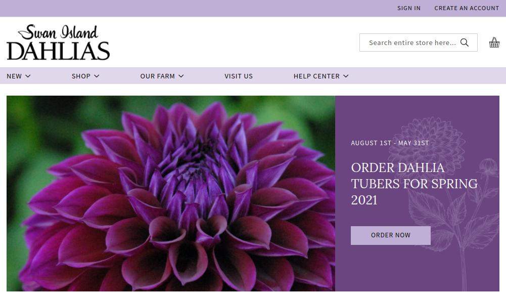 screenshot of Swan Island Dahlias website