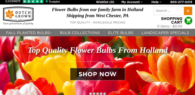screenshot of Dutch Grown website