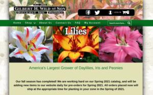 screenshot ofGilbert H. Wild and Son website