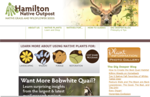 screenshot of Hamilton Native Outpost website