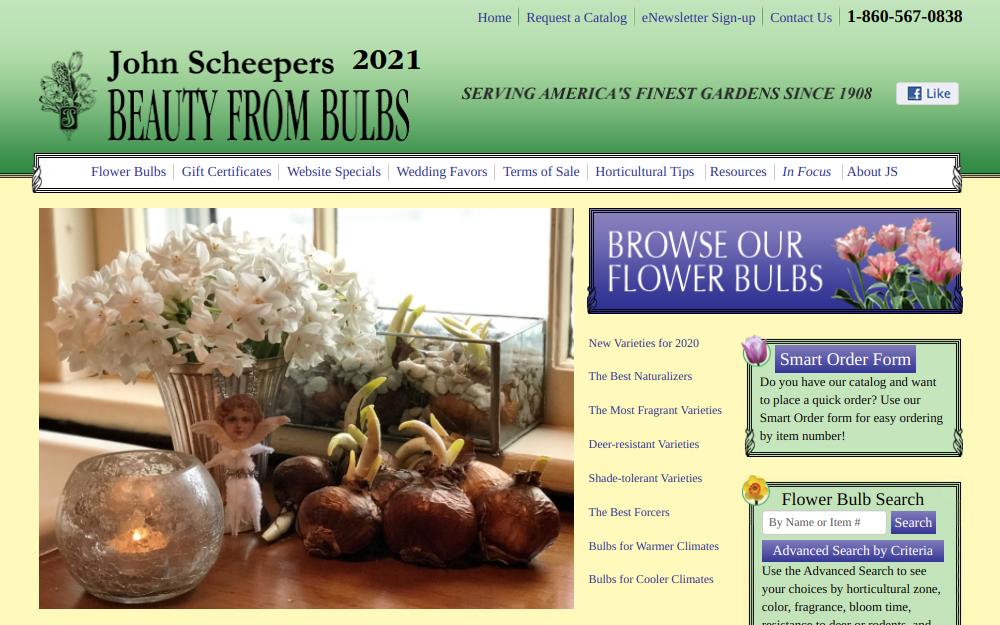 screenshot of John Scheepers Beauty From Bulbs website