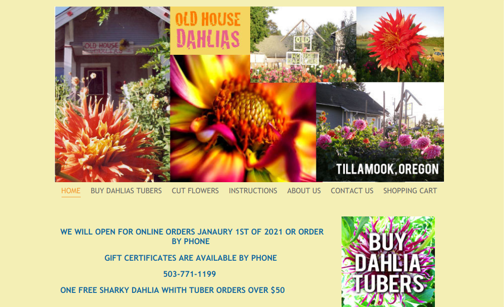 screenshot of Old House Dahlias website