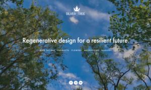 screenshot of Silver Tree website