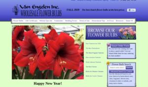 screenshot of Van Engelen website